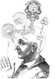 A n early model of the mind