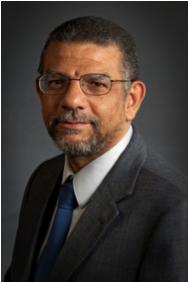 Mohamed Eltoweissy